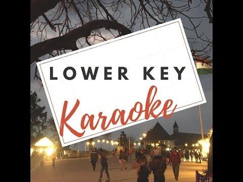 Stevie Wonder - I Just Called To Say I Love You (Karaoke LOWER Version)