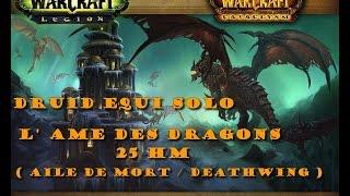 Druid Equi Solo L' Ame Des Dragons 25 HM ( Aile De Mort / Deathwing )