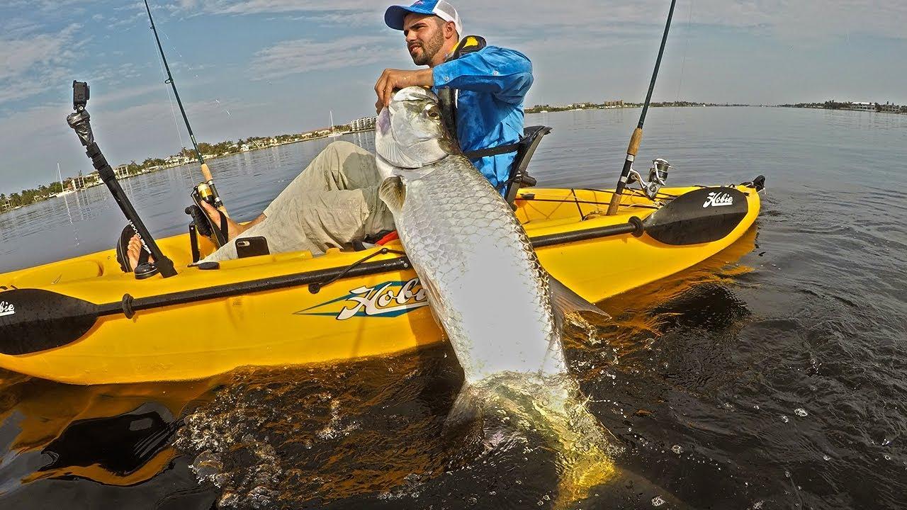 2017 mullet run big tarpon from hobie kayak deep blue for Deep blue kayak fishing
