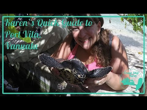 Karen's Quick Guide to Snorkeling & Turtle Sanctuary in Port Vila, Vanuatu