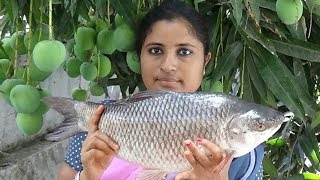 Village Foods- Big Rohu Fish Curry Cooking Village Style- Traditional Way Of Cook Whole Fish Gravy