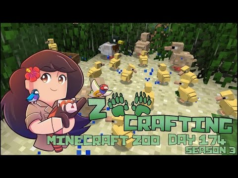 Surrounded by Tiny Ducklings!! 🐘 Zoo Crafting: Episode #174