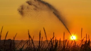 UN report warns climate change could disrupt global food chain A