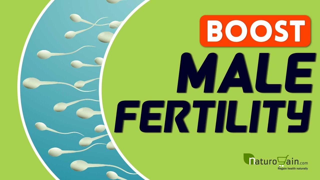 my Viatimins sperm count to boost