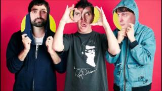 Animal Collective   Spilling guts