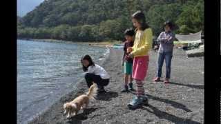 2回目の本栖湖キャンプ。風が強かったけど2日目朝にはきれいな富士山が...