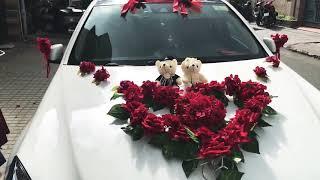 Hoa xe cưới mẫu gấu bông lên xe tại Đại Phát Auto