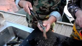 видео Как почистить окуня в домашних условиях