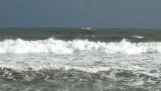 波浪警報の大波を乗りこなすのは難しい.
