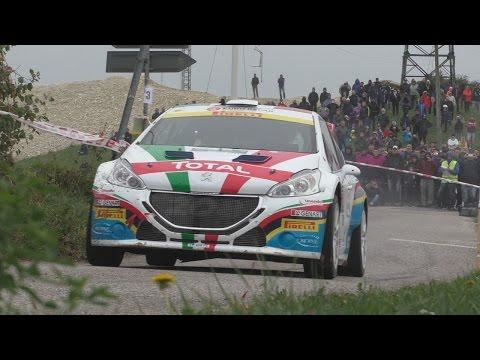 Rally Due Valli 2015   Paolo Andreucci E Peugeot 208 T16   Prima Tappa