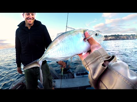 WOW! Caught More Fish At Ramp Than Boat?! - Sydney Harbour Fishing