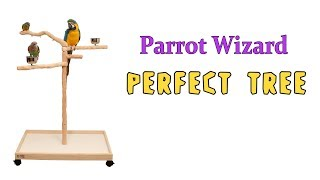 Parrot Wizard Perfect Tree