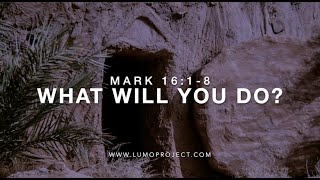 He is Risen. What Will You Do?