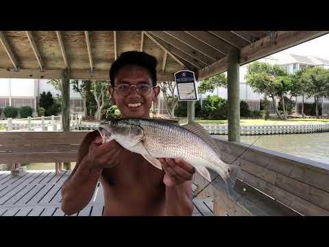 Atlantic Beach Dock Fishing