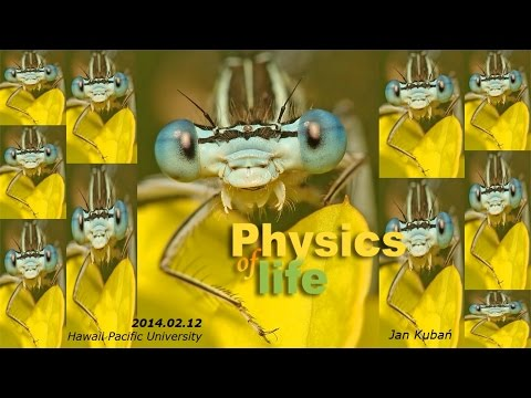 The Physics of Life - Introduction