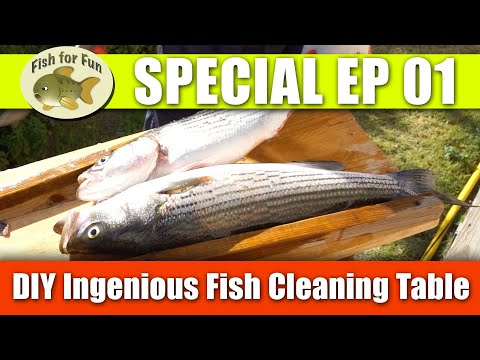 DIY Ingenious Fish Cleaning Table - Special Ep 01 [ Fish For Fun ] NOVEMBER 2019