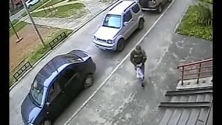Полиция Сыктывкара разыскивает велоугонщика