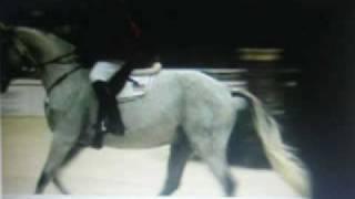 washington internashial horse show 2008
