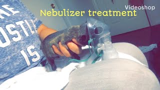 Aspiration Pneumonia Nebulizer Treatment French Bulldog Puppy