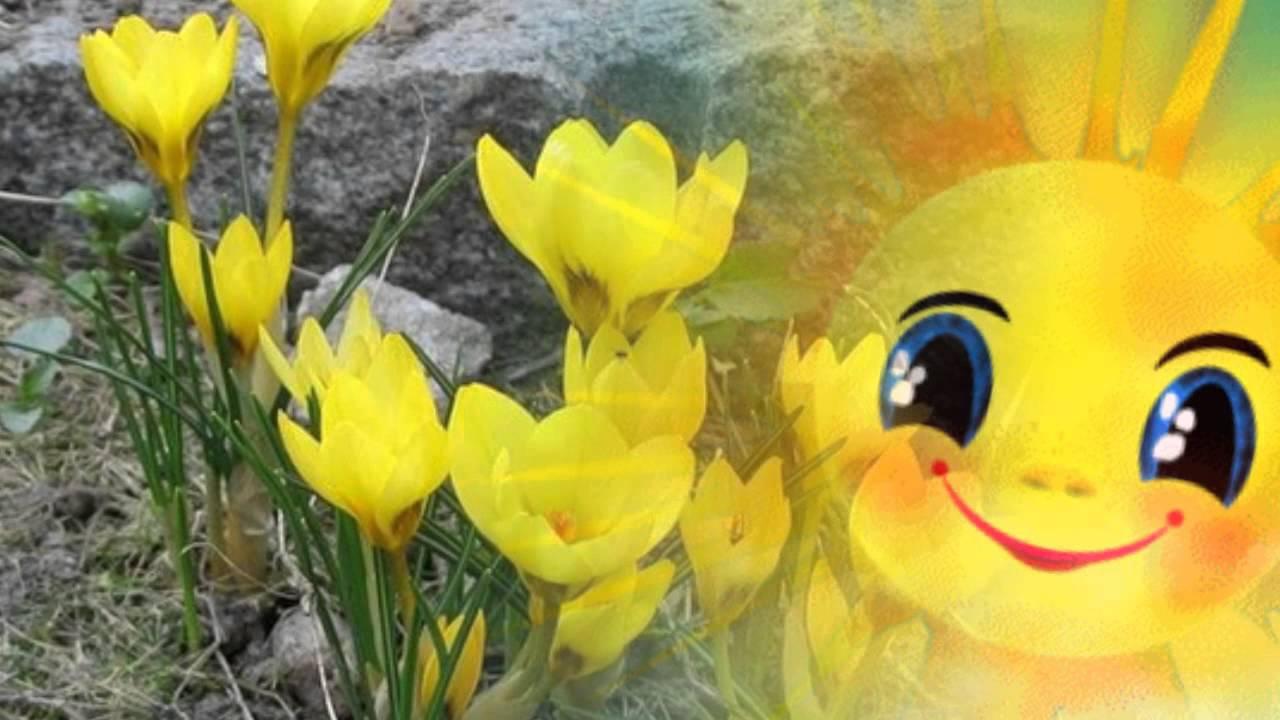 А весной а весной птички запевают каковы причины распространения алкоголизма и наркомании