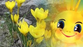 А весной  Насауленко