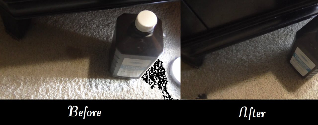 Removing Carpet Cat Vomit Stains with