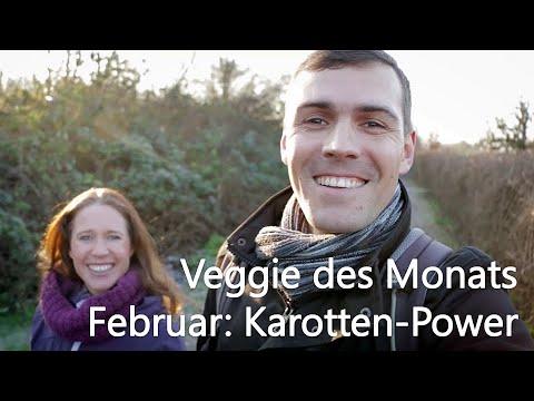 karotten-power-und-lauftipps-|-unser-veggie-des-monats-februar-von-bevegt