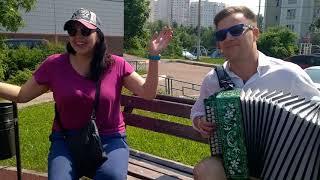 Досада Южное Бутово Гармонь