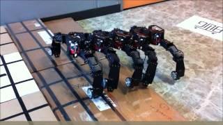 지네형 변신로봇 (transformable Robot) T-Bug