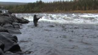 видео: Рыбалка на тайменя. Река Северная - вторая попытка.