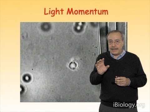 Microscopy: Optical Traps: An Introduction (Carlos Bustamante)