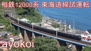 相鉄12000系 東海道線試運転 相模湾 海バック 早川-根府川