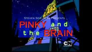 Pinky & the Brain Intro (Norsk/Norwegian)