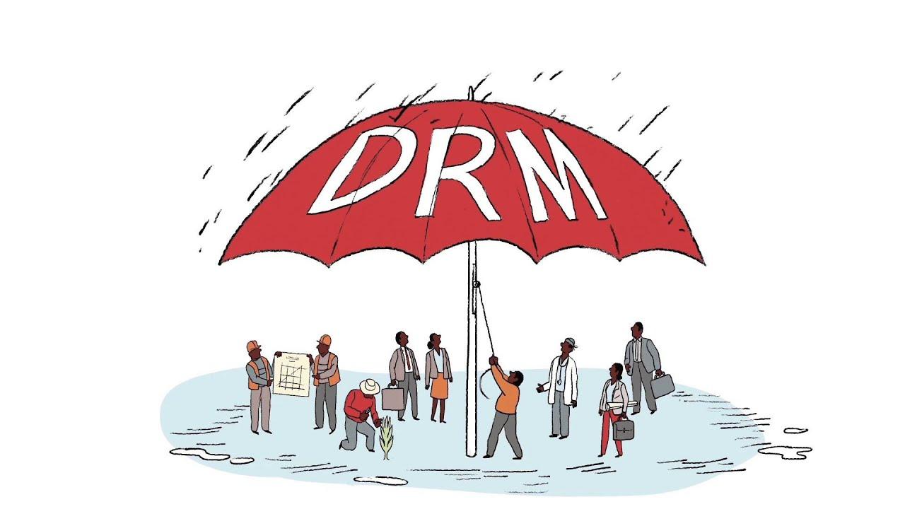 Capacity Building for Disaster Risk Management | Global