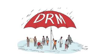 Building Capacity for Disaster Risk Management