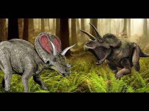 Who would win: Torosaurus vs Triceratops ( READ DESCRIPTION)