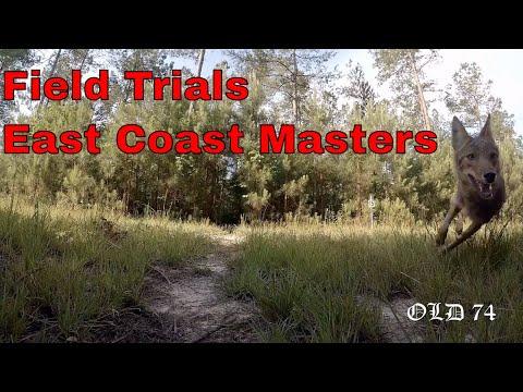 East Coast Masters Fox Hunt