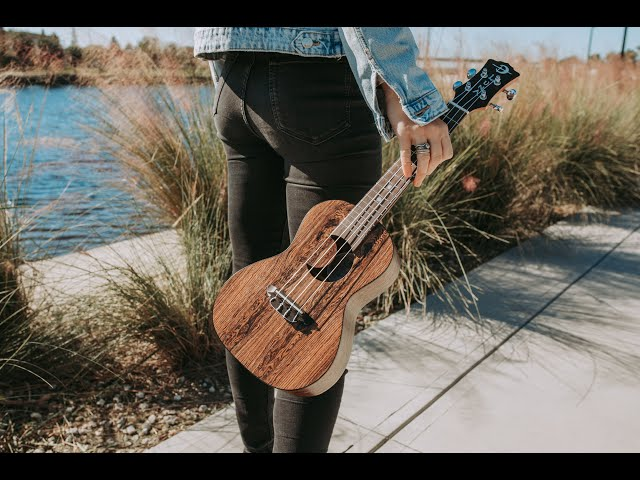 New for 2021 Product Highlights | Luna Guitars, Ukuleles & Percussion