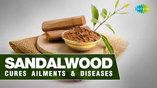 Sandalwood cures ailments & diseases   Masalon ki kahani   Anmol Kak   Saregama podcast