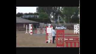 Hot Chocolate II-148cm JC jumping pony for sale