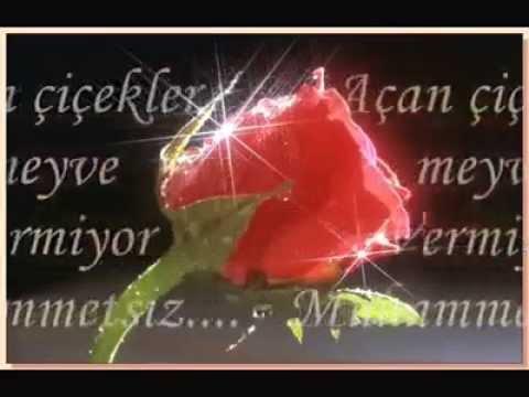 Mesut Şimşek ((Açan Çiçekler))''iLaHi''