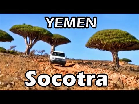 Socotra island, Yemen, a nature sanctuary in the Arabian Sea