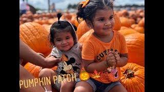 Pumpkin Patch|2018 🎃🍁