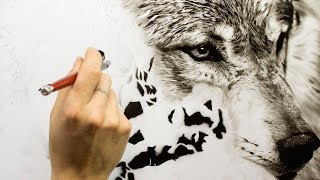 Painting Wolf -Game of thrones part 1
