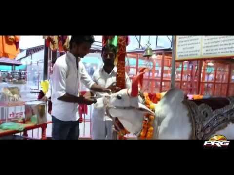 Pabuji maharaj is new song