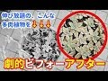 【DIY】超簡単!シャリシャリ伸び〜るアイシースライム作ってみた!【slime】 - YouTube