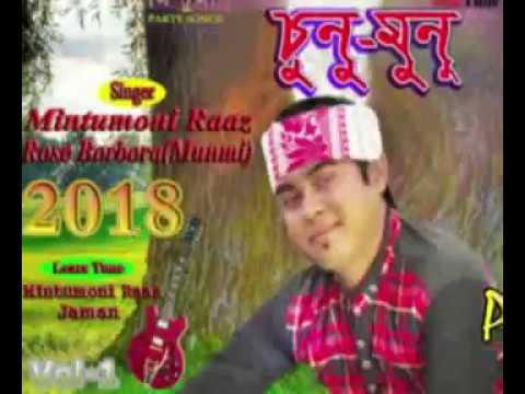 Mintumoni Raaz Songs  প্ৰতি  দিন পতি পলে (Saju Ahmed )