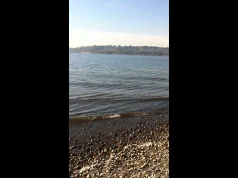 Holmes Point Park 10.2012