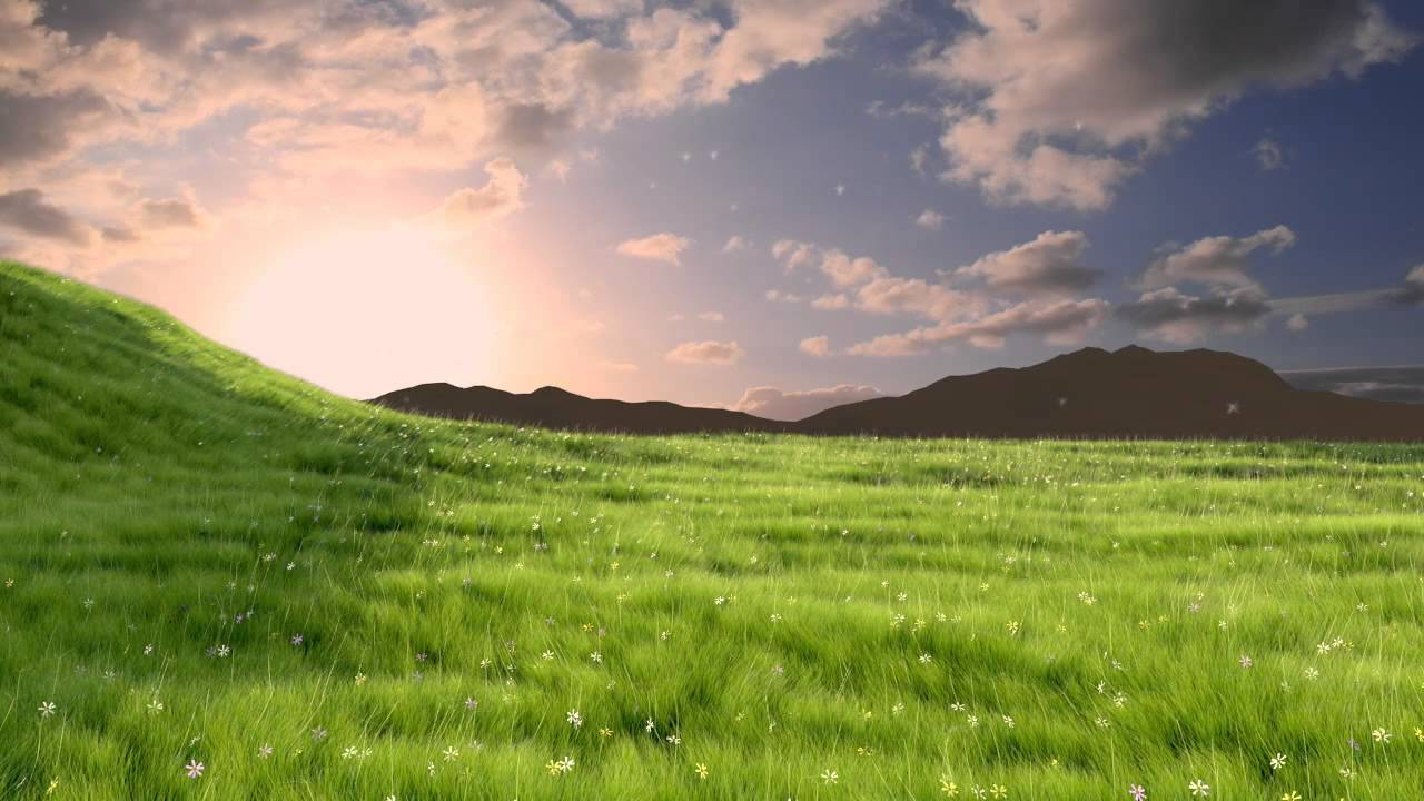 Field Hockey Hd Wallpapers Grass Animation Made In Blender 3d 2 58a Hd Youtube