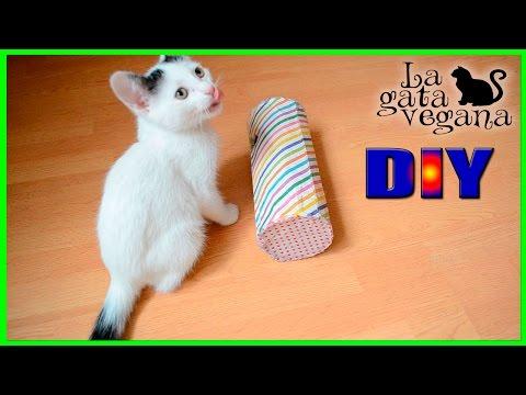 Juguetes caseros para gatos dispensador de comida pet doovi - Juguetes caseros para conejos ...